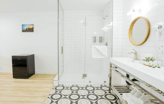 Shower and Vanity Area